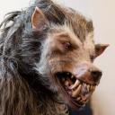 Techwolf