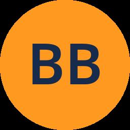 Bas Brey
