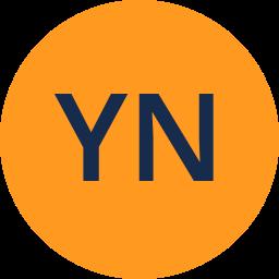 Yinon Negev